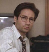 david d glasses